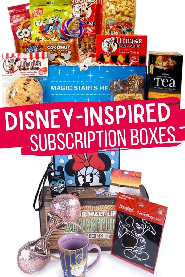 Bring the Disney parks home with these fun Disney-inspired Subscription boxes! These are perfect for adults, too!