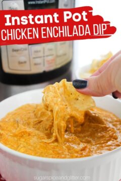 Instant Pot Chicken Enchilada Dip