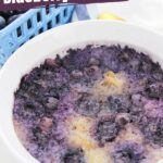 Instant Pot Blueberry Oatmeal