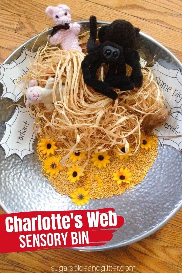 This book-inspired sensory bin is the perfect Charlotte's Web activity for kids - providing a fun sensory experience while learning about adjectives