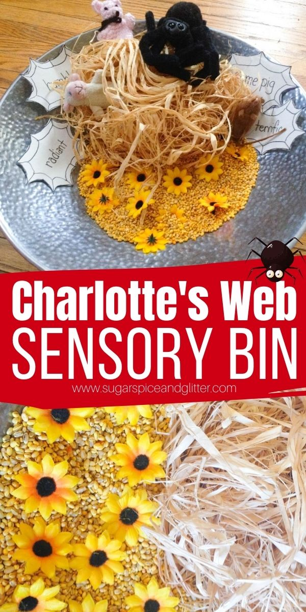 A fun hands-on way to teach adjectives to kids, perfect after reading or watching Charlotte's Web. This Charlotte's Web Sensory Bin is a fun twist on a classic farm sensory bin