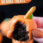 No Bake Pumpkin Cake Pops