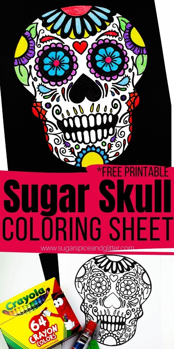 A simple sugar skull craft for kids, this free printable sugar skull coloring sheet is a gorgeous template that can be used to make a homemade card, wall art or a Dia de los Meurtos banner