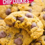 Pumpkin Chocolate Chip Cookies (with Video)