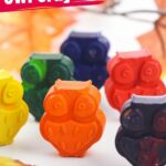 Owl Crayons (with Video)