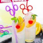 Copycat Disneyland Mint Juleps (with Video)