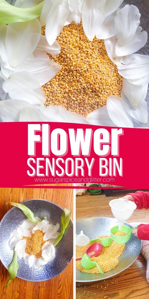 How to make a super simple flower sensory bin for kids, great for reinforcing the parts of a flower while giving kids plenty of opportunity to scoop, pour and measure which are great early mathematics concepts