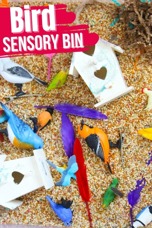 A quick and easy sensory bin for kids, this Bird Sensory Bin allows for fine motor skill development while learning about our feathered friends.