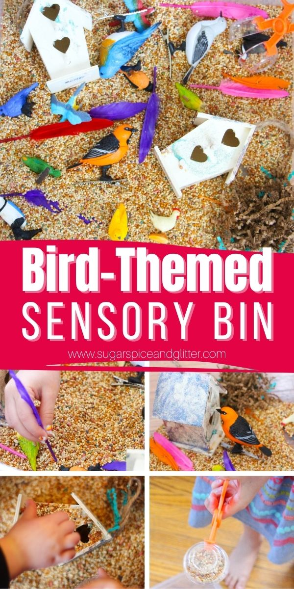 How to make a bird sensory bin for little bird lovers. A great way to build fine motor skills with plenty of opportunities for math and language exploration, too!