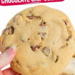 Big Fat Chewy Chocolate Chip Cookies (with Video)